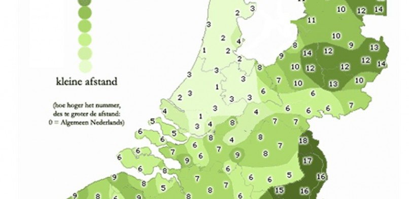 Koen de Groot, Taalnatie. Het Fries en Limburgs in Nederland