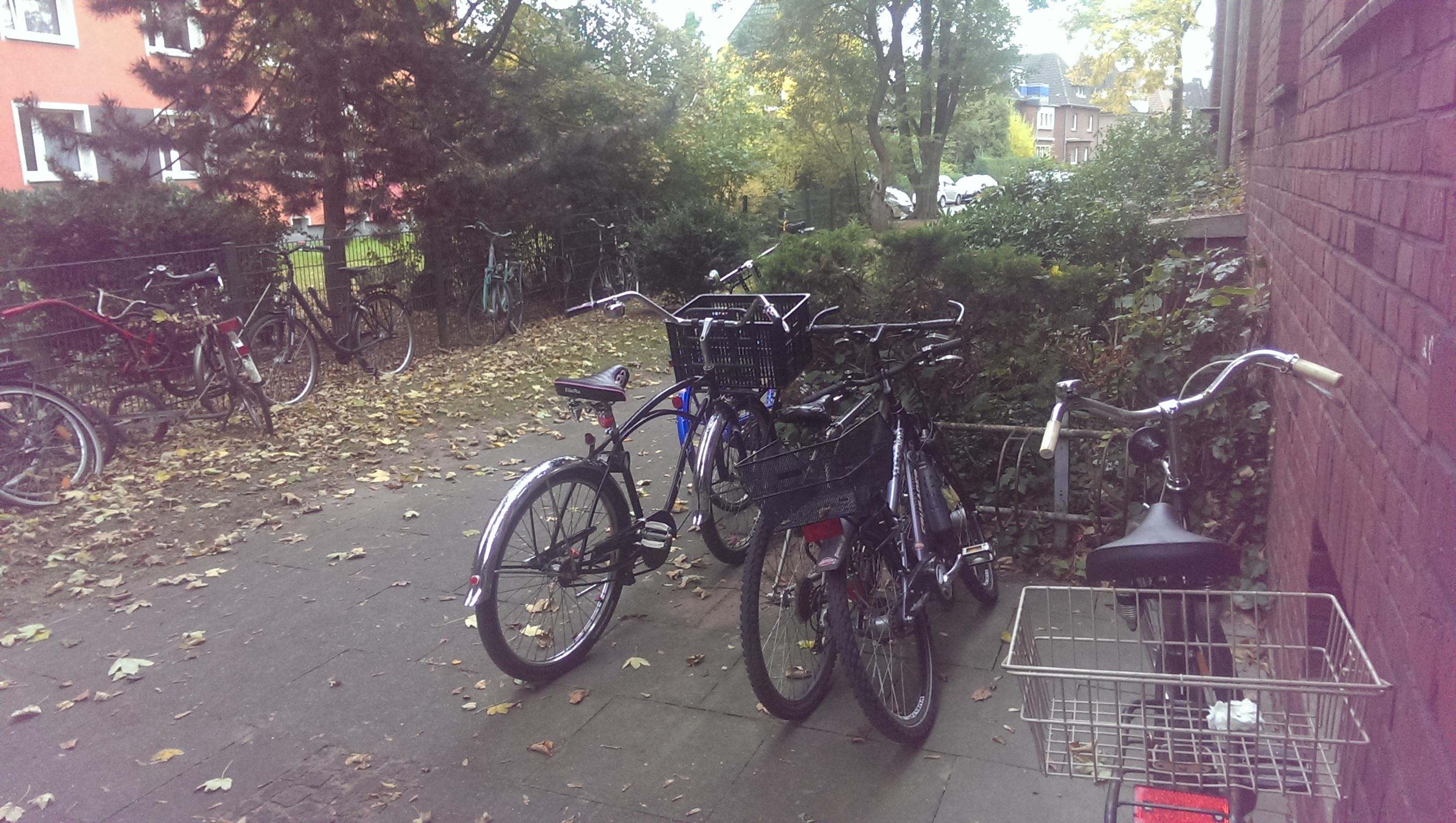 Onze vrouw in Münster: Waarom we voor het fietsen niet in Duitsland moeten zijn
