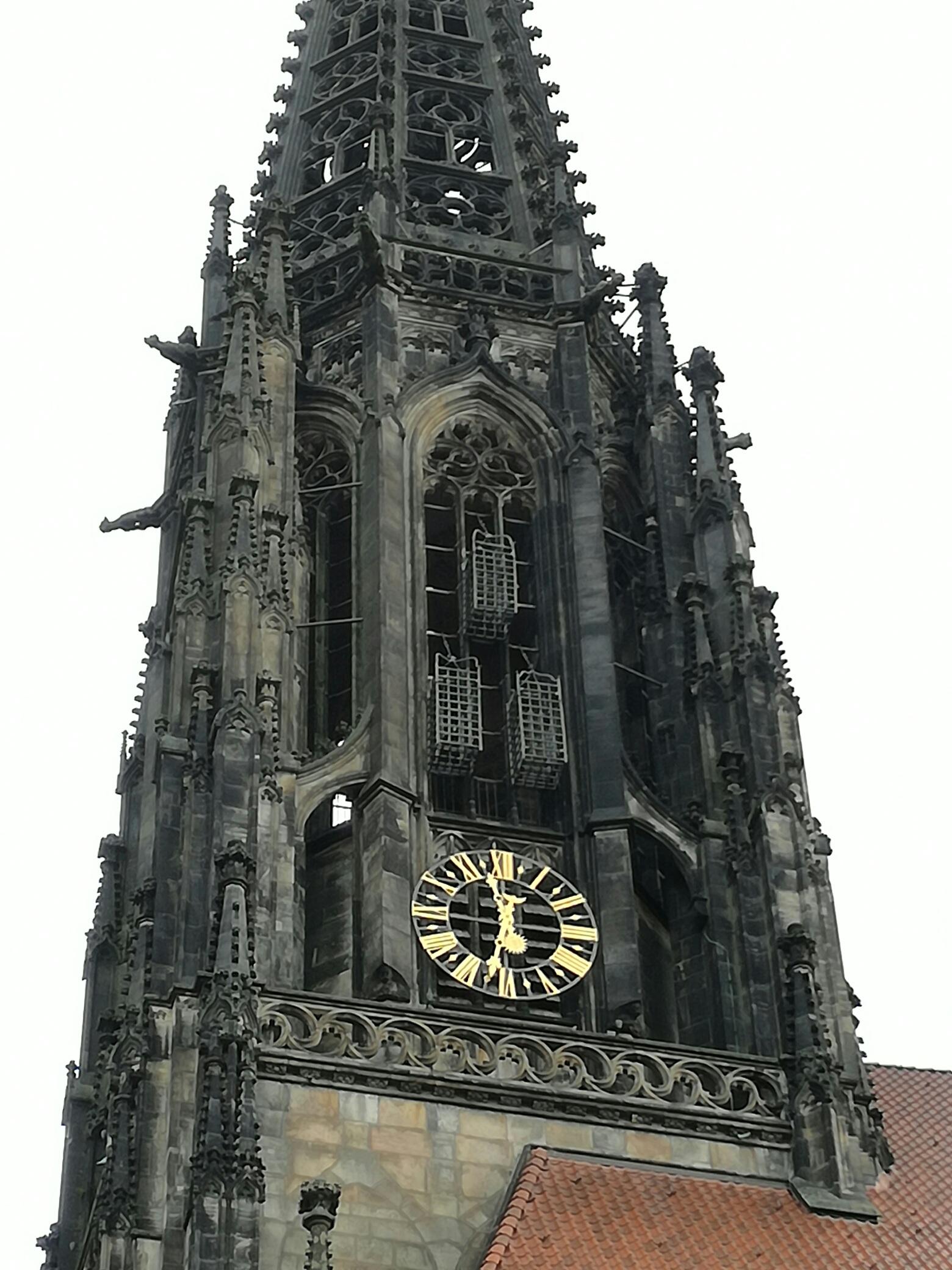 Onze vrouw in Münster: De wederdopers. Nederlandse terreur in Münster